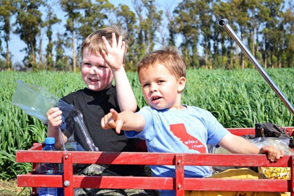 farmday2