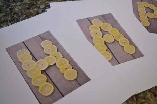 citrusart