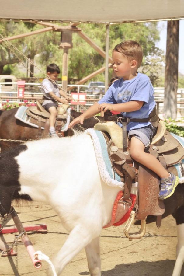 wes riding pony