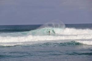 hawaii 41