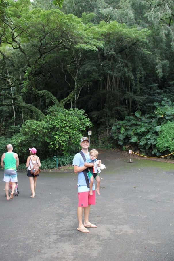 hawaii 70