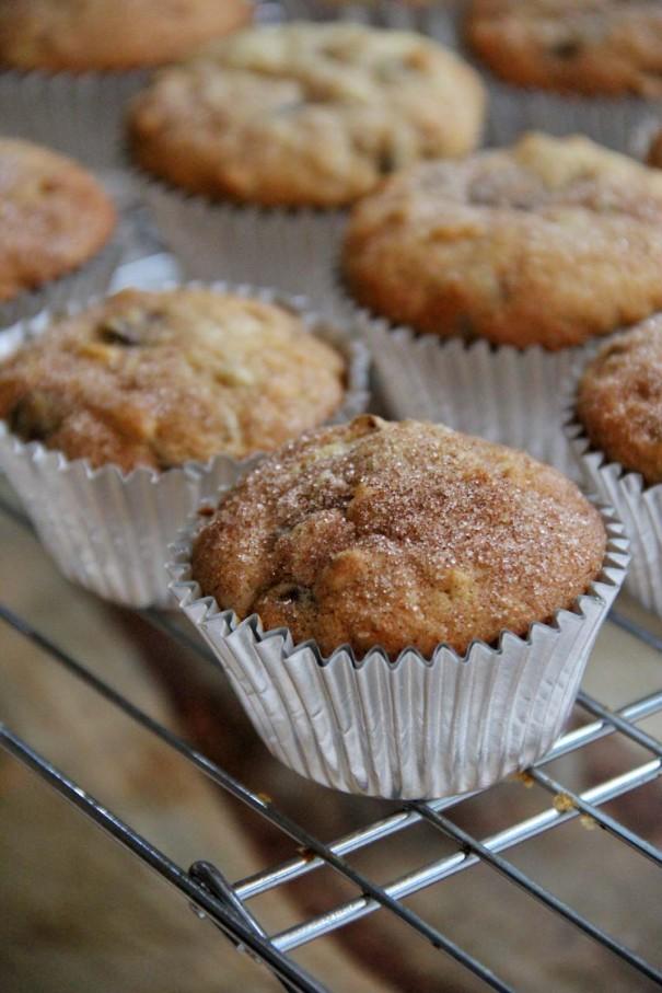 chocolate chip banana nut muffins recipe