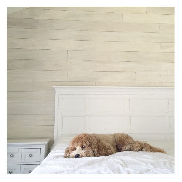 How To Make A White Washed Wood Plank Accent Wall Diy Wash Img 7982 Bedroom