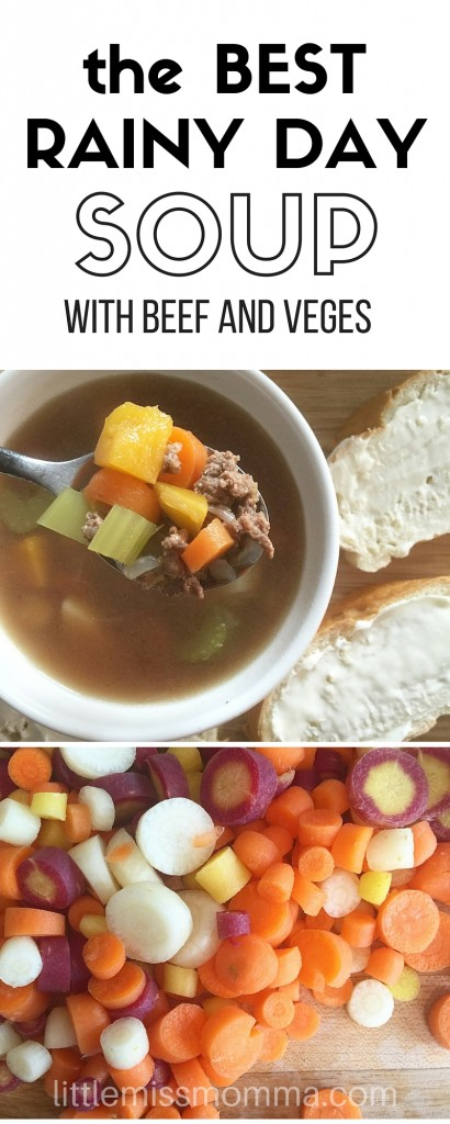 easy beef and vegetable soup recipe